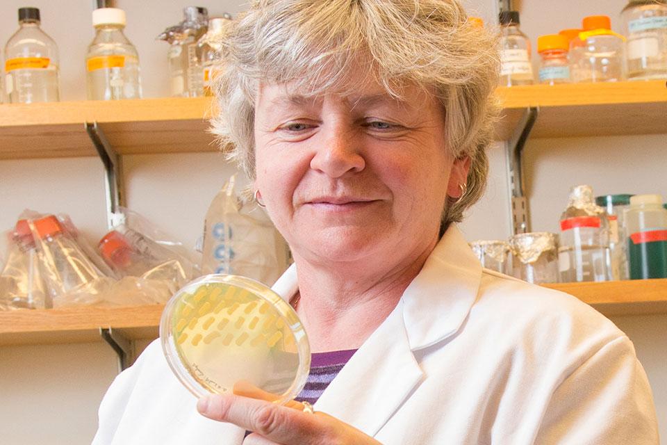 Angela Wilks, PhD